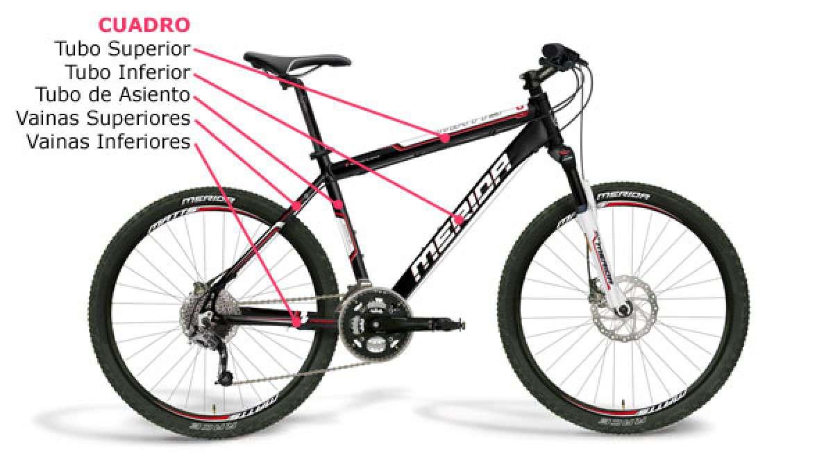 Las partes de una bicicleta de montaña, al detalle