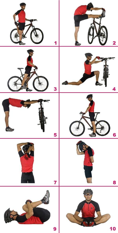 Estiramientos básicos para antes y después de entrenar