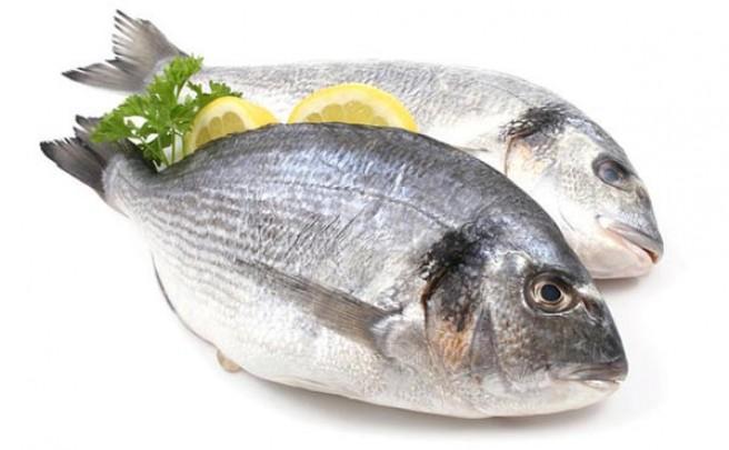 Nutrición: Comer pescado mejora tu rendimiento sobre la bicicleta