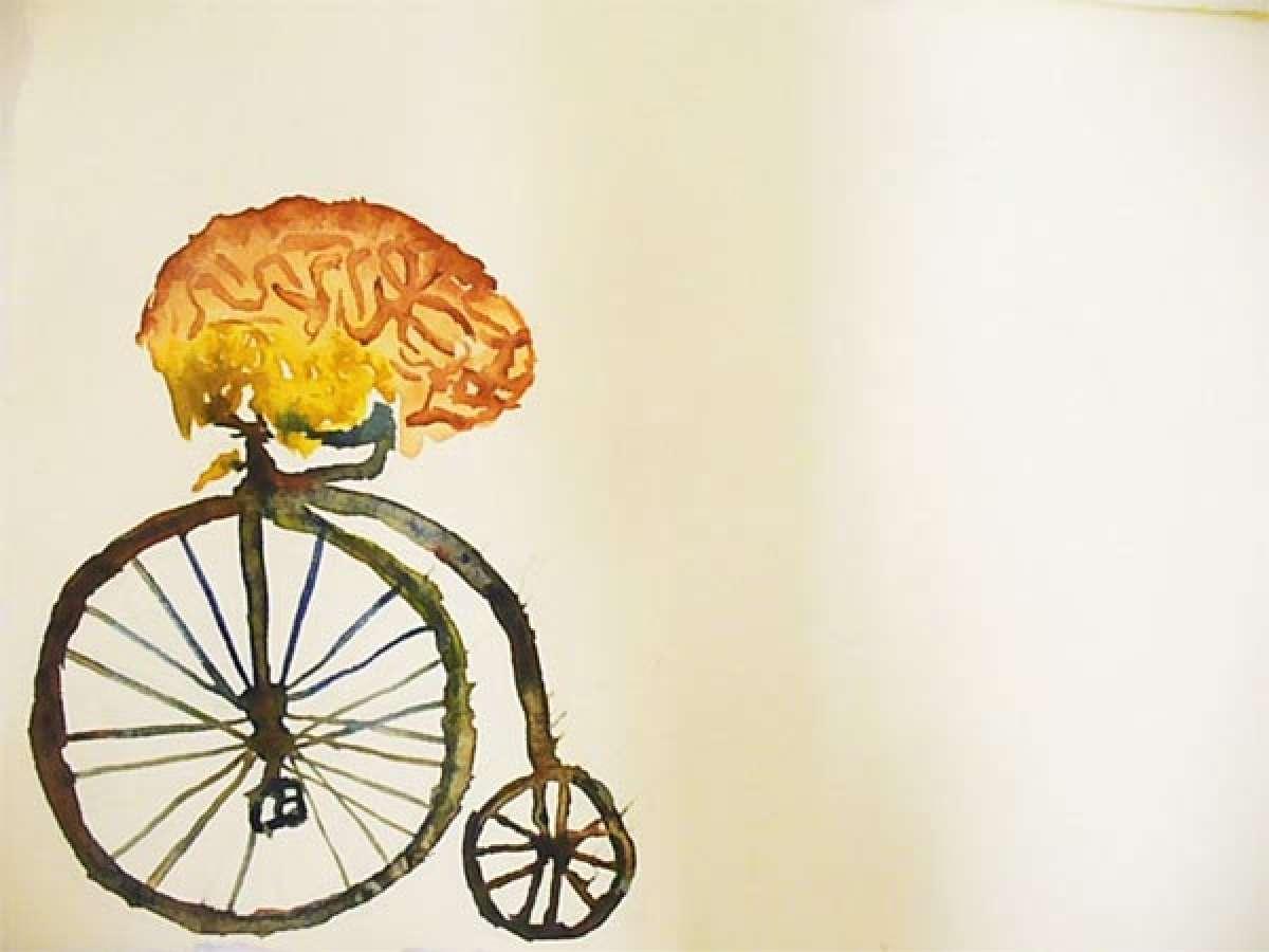 Un poco de ciencia: Los ciclistas, ¿más listos que los demás?