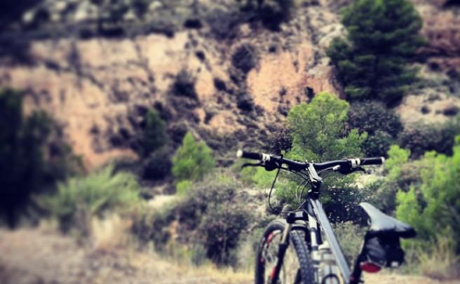 La foto del día en TodoMountainBike: 'Fisgando por la Sierra de Crevillente'