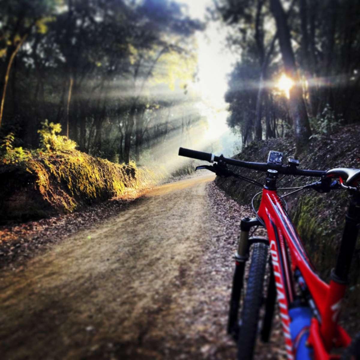 """La foto del día en TodoMountainBike: """"Parque Natural de Collserola"""""""