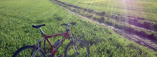 La foto del día en TodoMountainBike: 'Campos de cebada en Almodóvar del Pinar (Cuenca)'