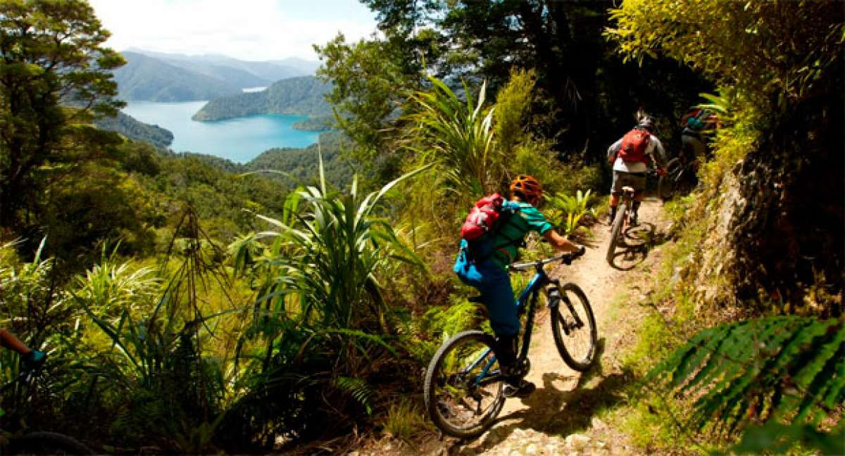 Practicando Mountain Bike en Nueva Zelanda con Anka Martin y Juliana Bikes