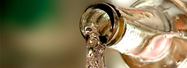 Nutrición: 10 Excelentes razones para beber agua