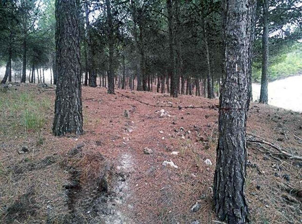 Más trampas mortales en los montes de Galicia... El SEPRONA solicita la colaboración ciudadana para detener a los ASESINOS