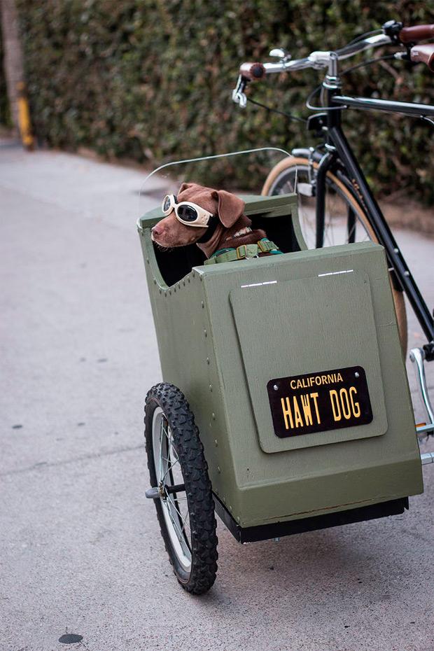 Bricolaje ciclista: Cómo fabricar un sidecar para perros