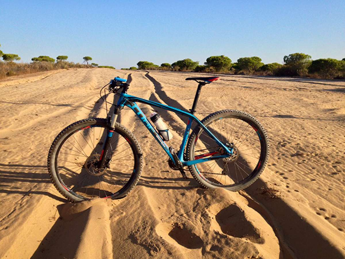 La foto del día en TodoMountainBike: 'Doñana Desert'