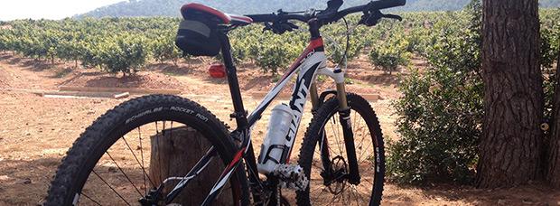 La foto del día en TodoMountainBike: 'Subiendo a las Antenas del Monte Picayo'