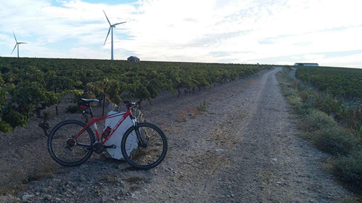 La foto del día en TodoMountainBike: 'Ruta Las Casas de la Viña'