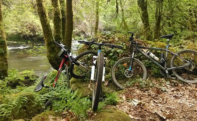 La foto del día en TodoMountainBike: 'Galicia Verde'