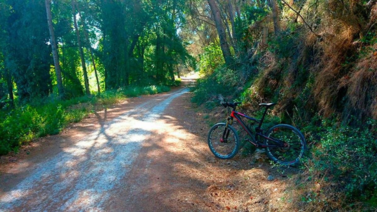 """La foto del día en TodoMountainBike: """"Parque Fluvial del Turia"""""""
