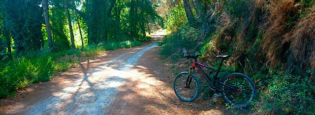 La foto del día en TodoMountainBike: 'Parque Fluvial del Turia'