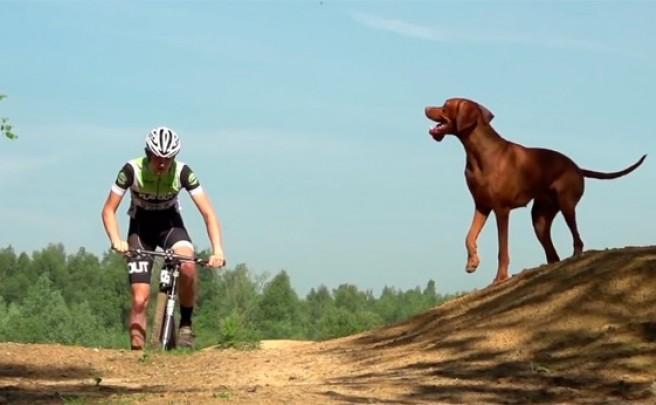 Tom & Ruby: Un ciclista, una Cannondale, un perro y mucho XC