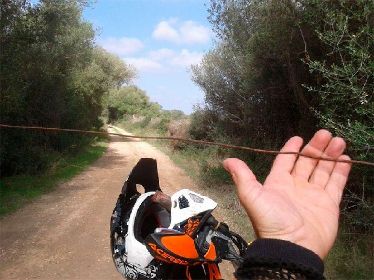 Alerta en Mallorca: Nuevas trampas mortales en la zona de Llucmajor
