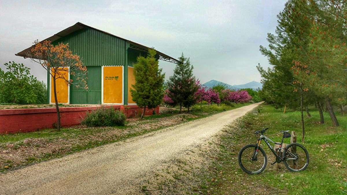 """La foto del día en TodoMountainBike: """"Vía Verde del Aceite"""""""