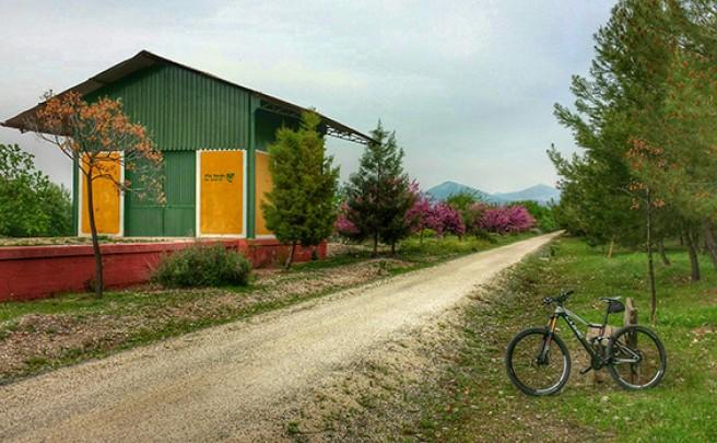 La foto del día en TodoMountainBike: 'Vía Verde del Aceite'
