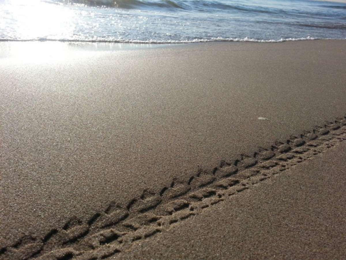 La foto del día en TodoMountainBike: 'La Playa de la Malvarrosa'
