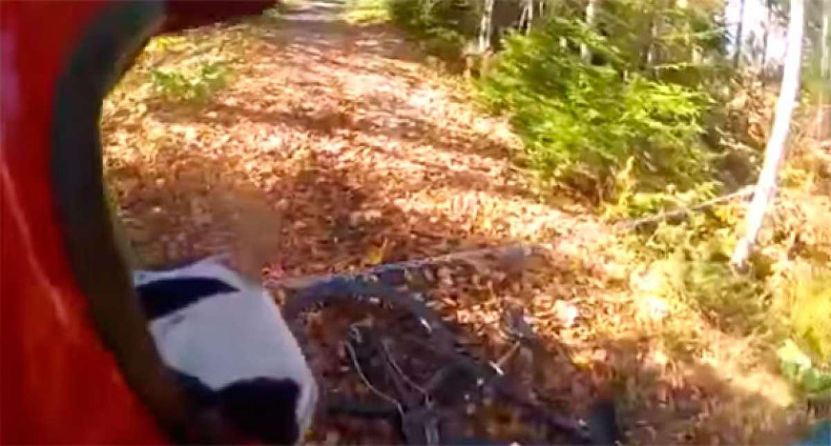 Brutal accidente de un ciclista contra una cadena cruzada en mitad del camino