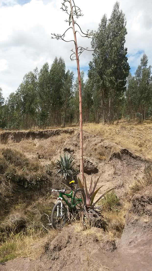 La foto del día en TodoMountainBike: 'Rodeando las montañas volcánicas de Quito'