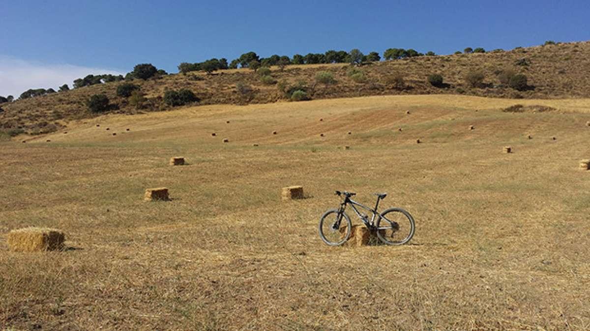La foto del día en TodoMountainBike: 'Alto de Cumbres Verdes'