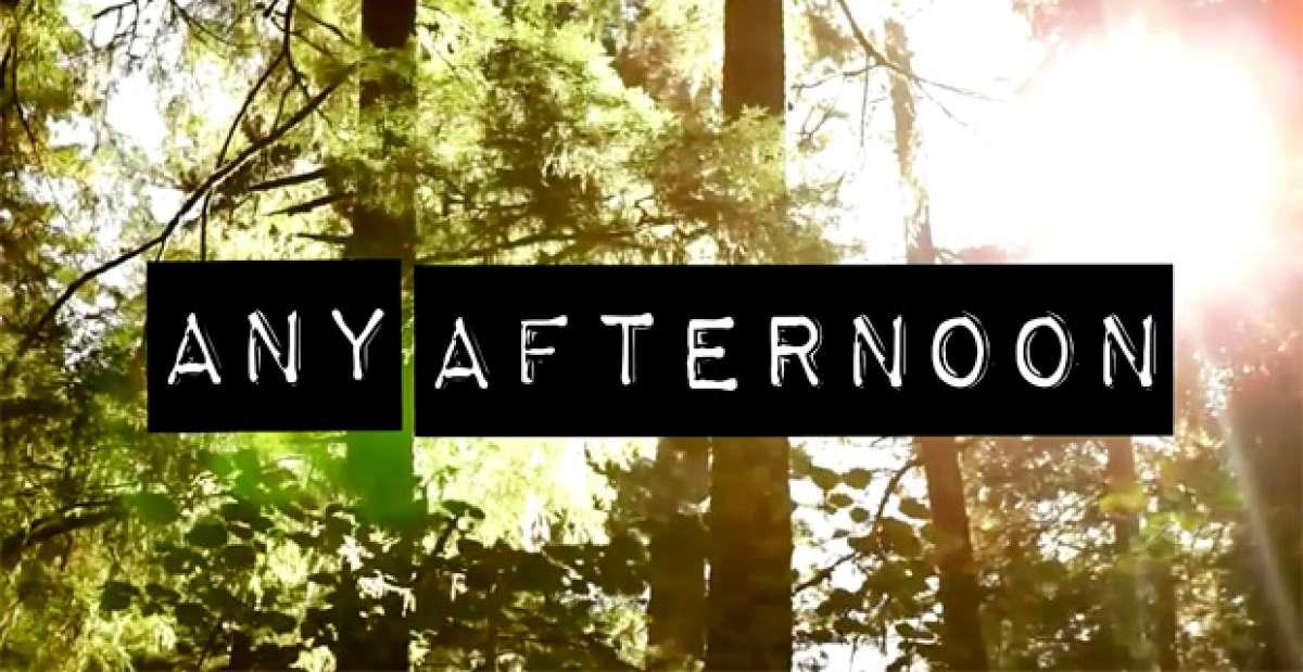 """""""Any Afternoon"""", una tarde cualquiera rodando con una Axxis Altec 29 EVO"""