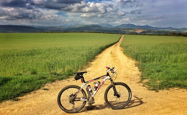 La foto del día en TodoMountainBike: 'Cañada Real de Ronda a Osuna'