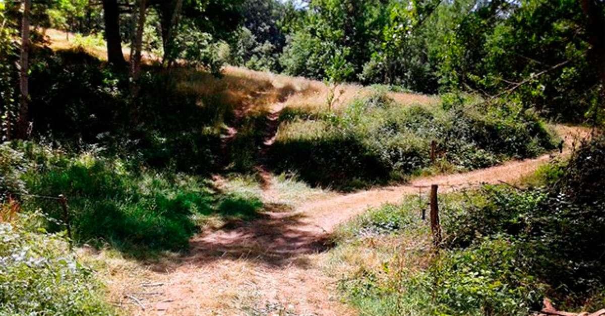 Un ciclista muerto al chocar con un cable colocado en una senda pública de Cantabria