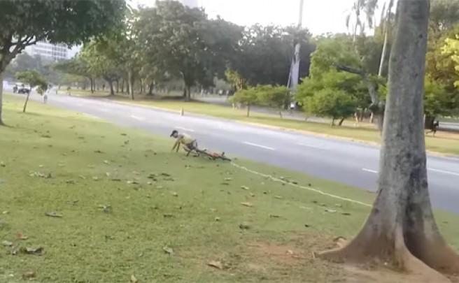 El método más eficaz para evitar el robo de una bicicleta... ¡Una simple cuerda!