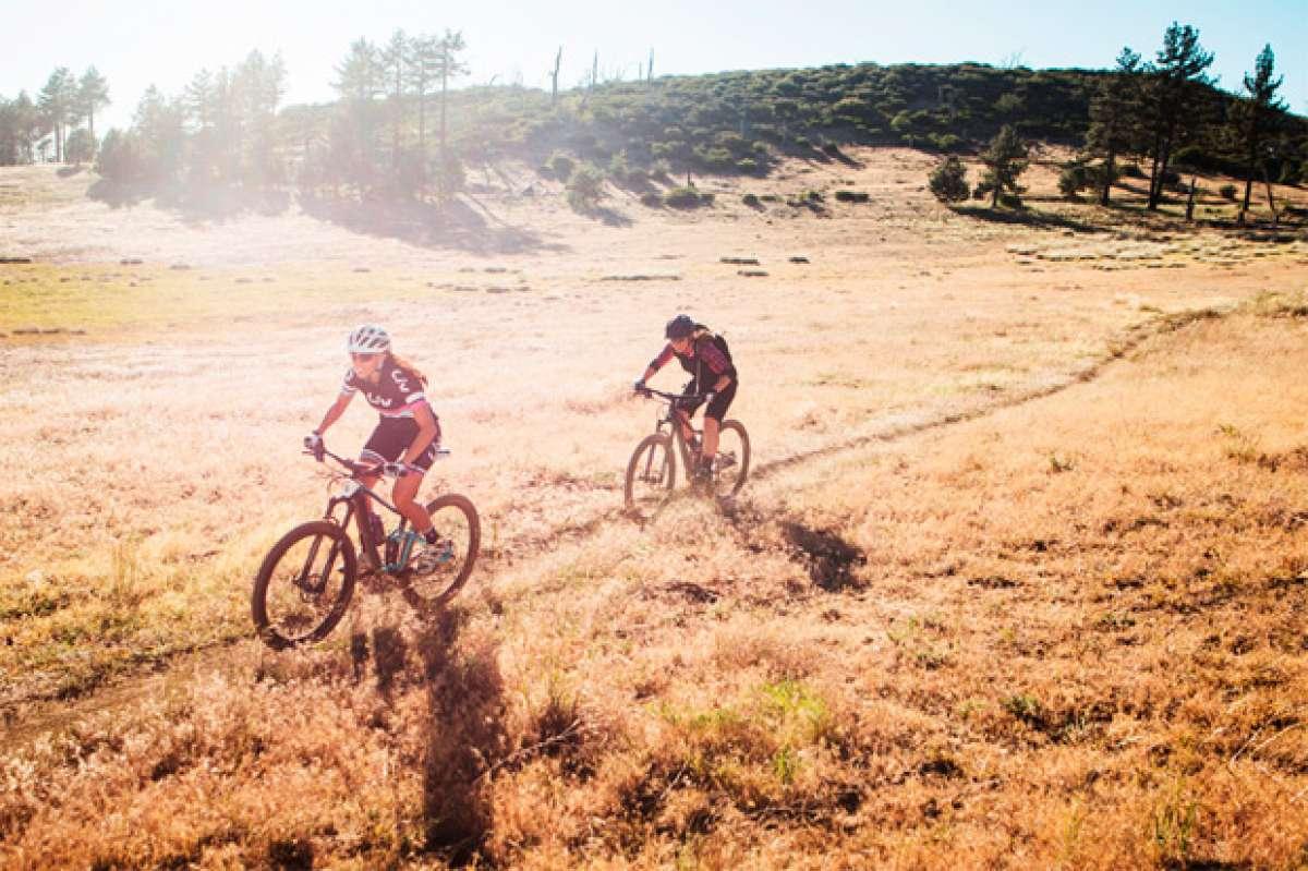 Todo acerca de las geometrías de la gama Liv, las bicicletas para mujeres de Giant