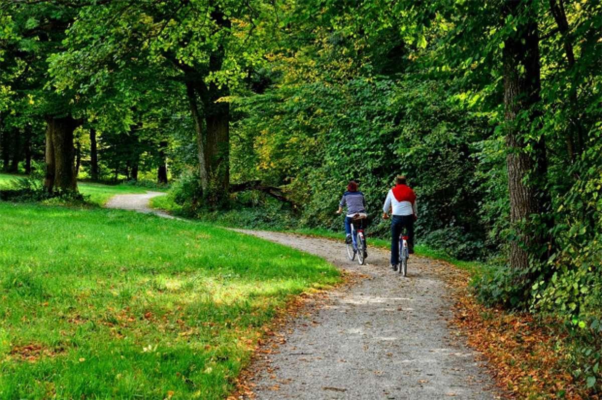 El ciclismo, el deporte más practicado en España durante 2015 según el Ministerio de Educación, Cultura y Deporte