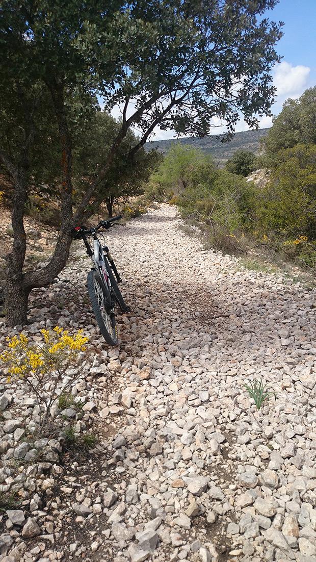 """La foto del día en TodoMountainBike: """"Vía Verde Tajuña - La Alcarria"""""""