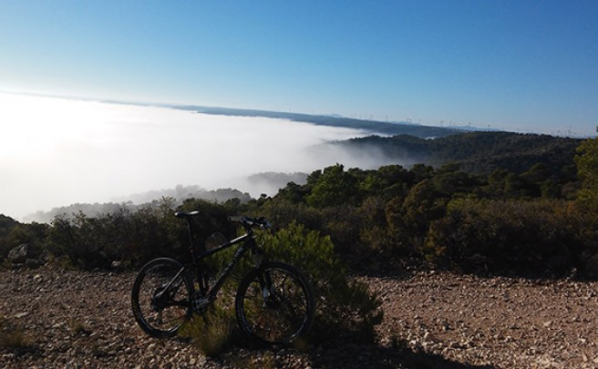La foto del día en TodoMountainBike: 'Escapando de la niebla'