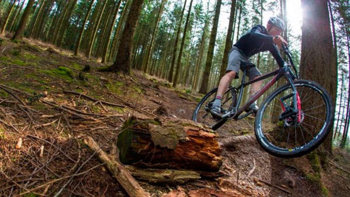 La horquilla Lauf Trail Racer 29 en acción