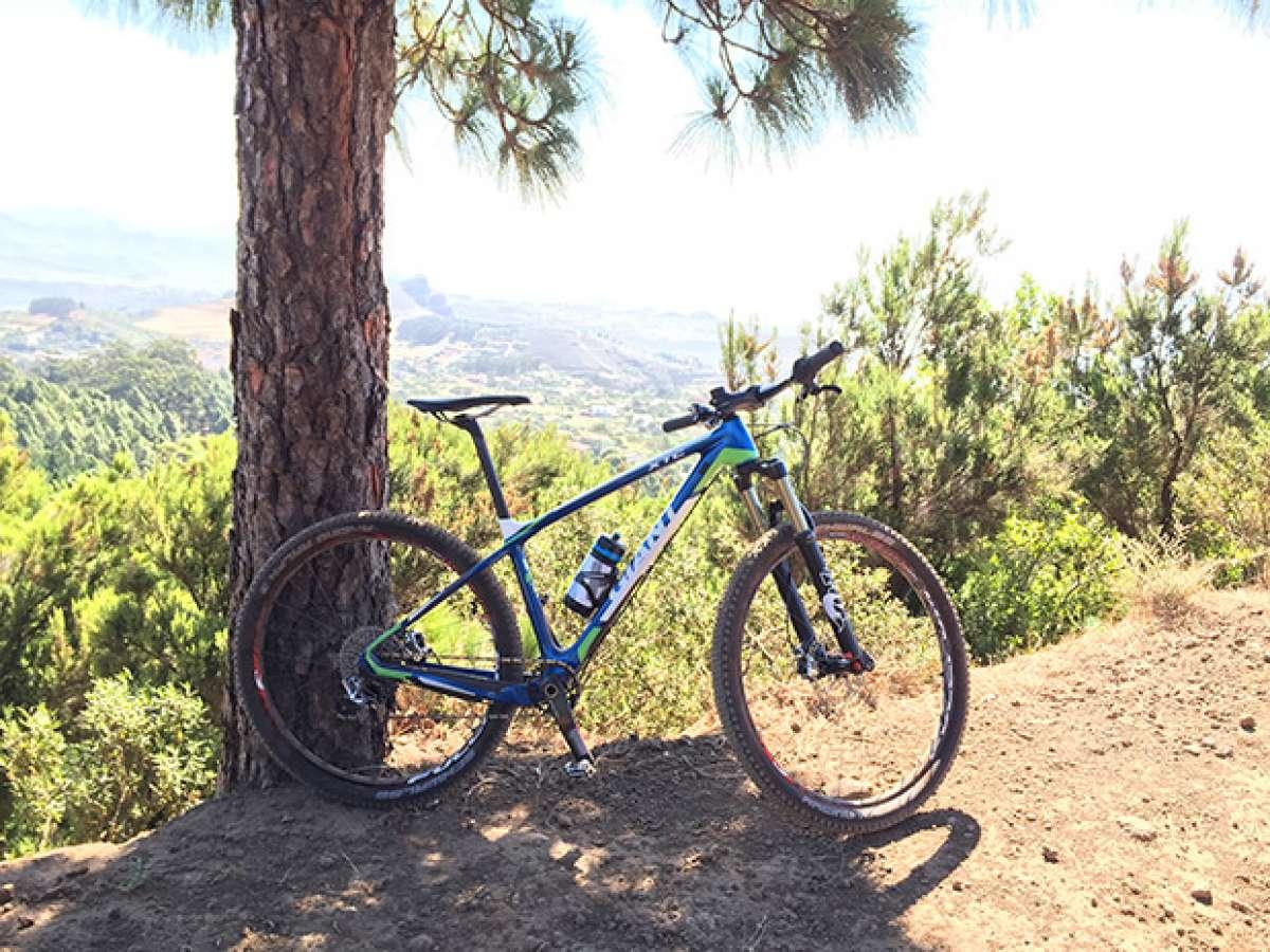 La foto del día en TodoMountainBike: 'Monte de La Esperanza'