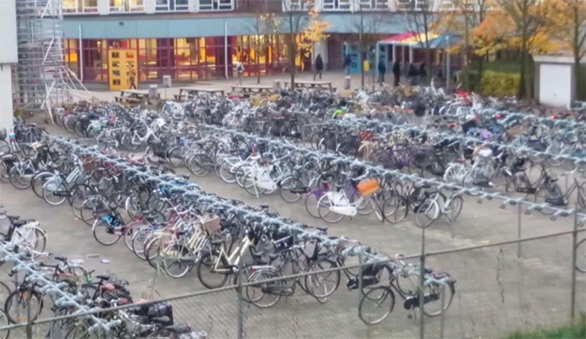 Una mañana cualquiera en una escuela de Holanda