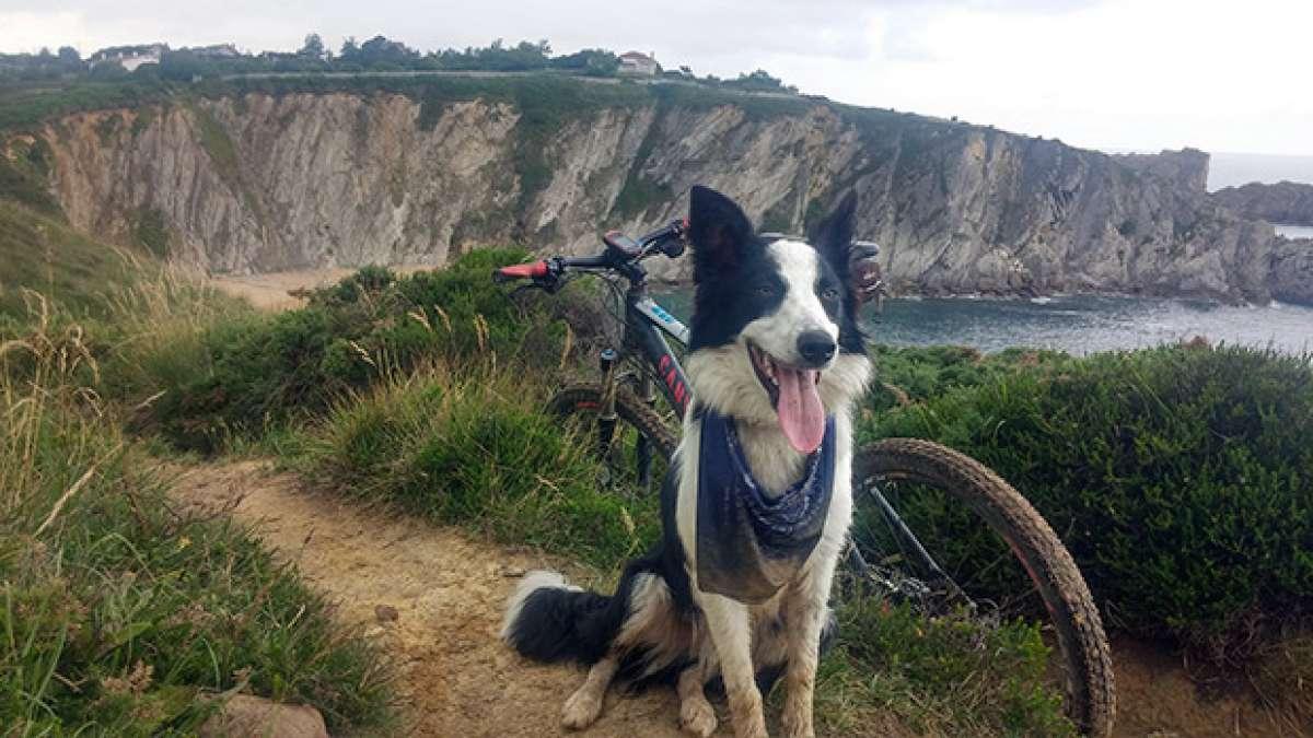 """La foto del día en TodoMountainBike: """"Playa de Covachos"""""""