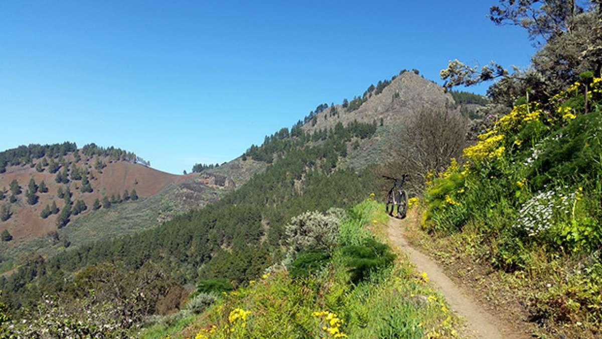 La foto del día en TodoMountainBike: 'Primavera en Gran Canaria'