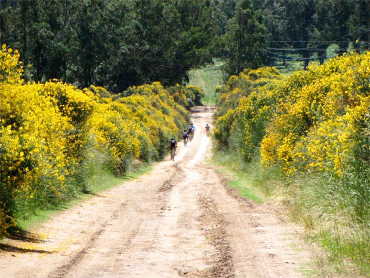 """La foto del día en TodoMountainBike: """"Una ruta por Balcarce (Argentina)"""""""