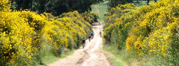 La foto del día en TodoMountainBike: 'Una ruta por Balcarce (Argentina)'