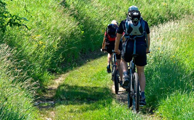 Diez bicicletas de la temporada 2017 para iniciarse en el Mountain Bike