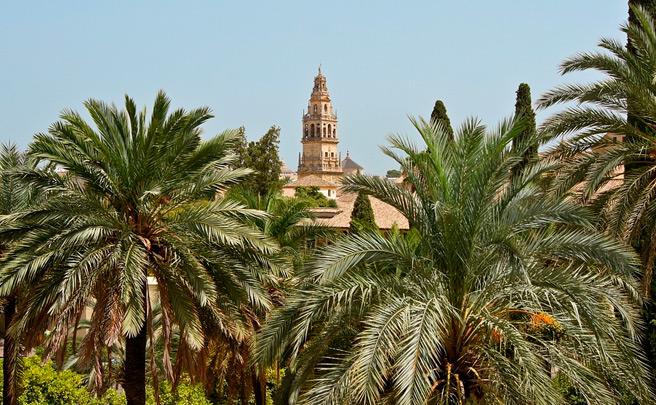 Por el buen camino: Córdoba pondrá bicis a los trabajadores municipales