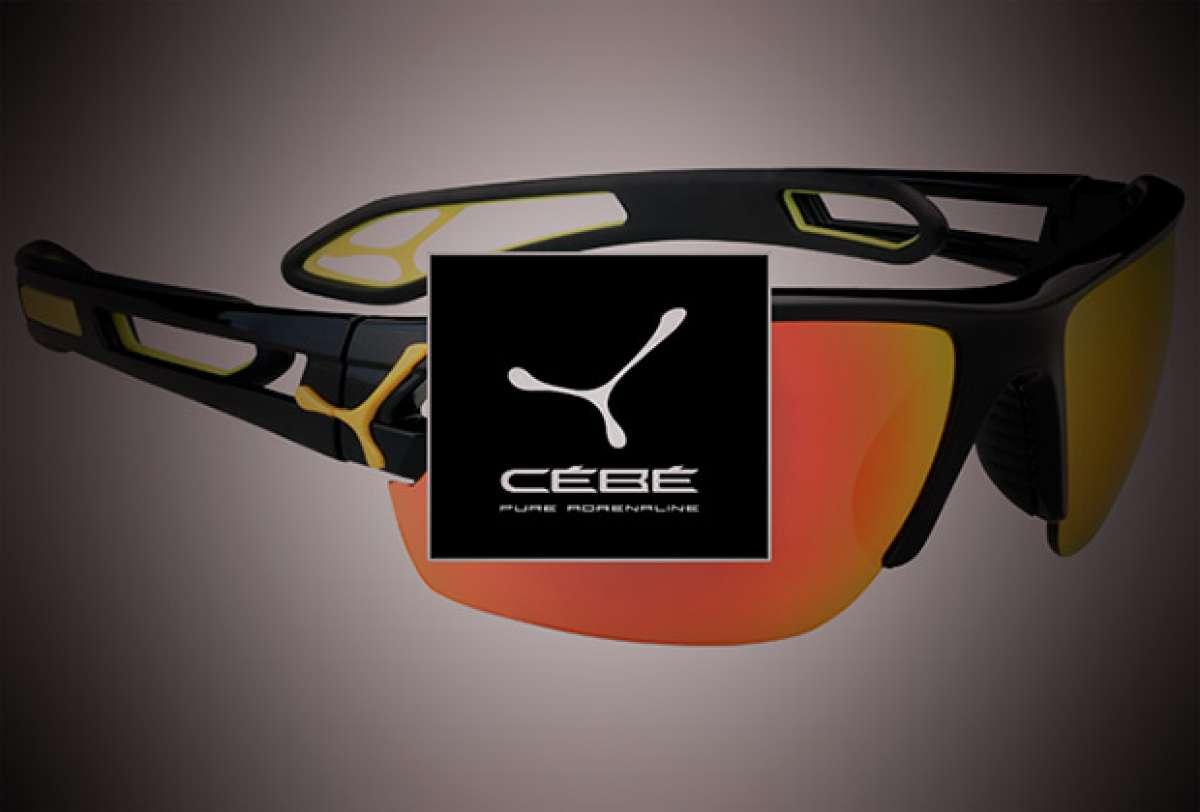 """Cébé S""""Track, nueva versión para las gafas más polivalentes de la firma francesa"""