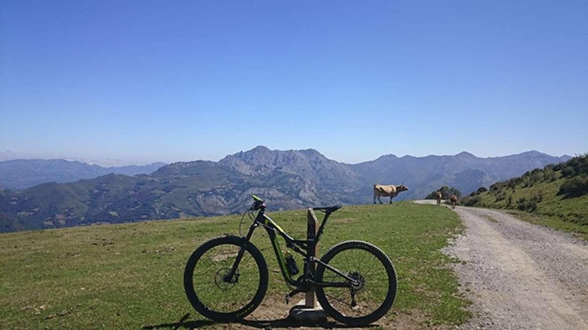 """La foto del día en TodoMountainBike: """"Coto Bello, Asturias, Paraíso Natural"""""""