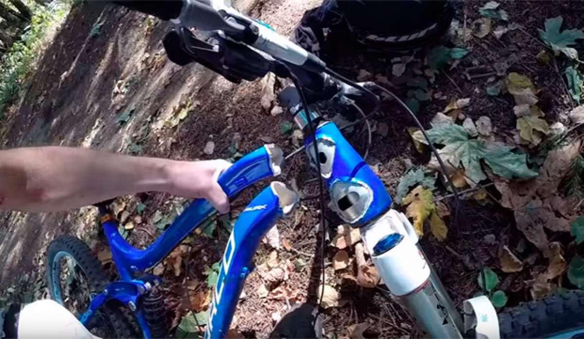 Así se parte el cuadro de una bicicleta contra un árbol