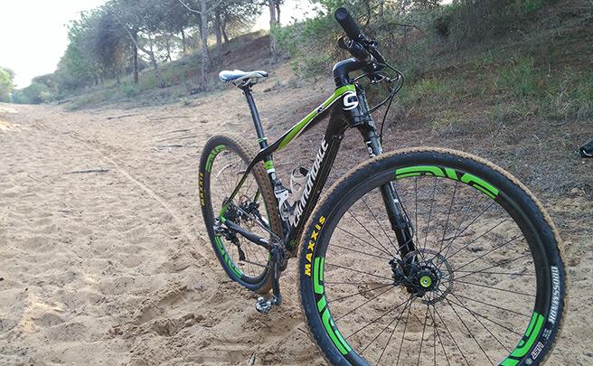 La foto del día en TodoMountainBike: 'Entreno por las dunas'