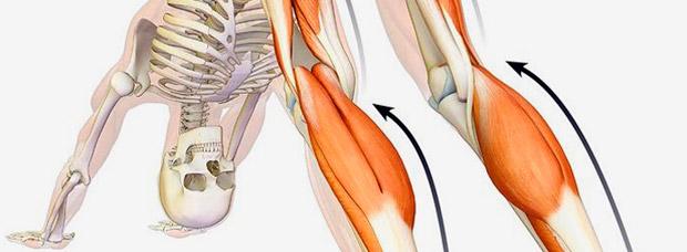 Cuatro ejercicios para mejorar la flexibilidad de piernas y espalda de forma instantánea en menos de 10 minutos