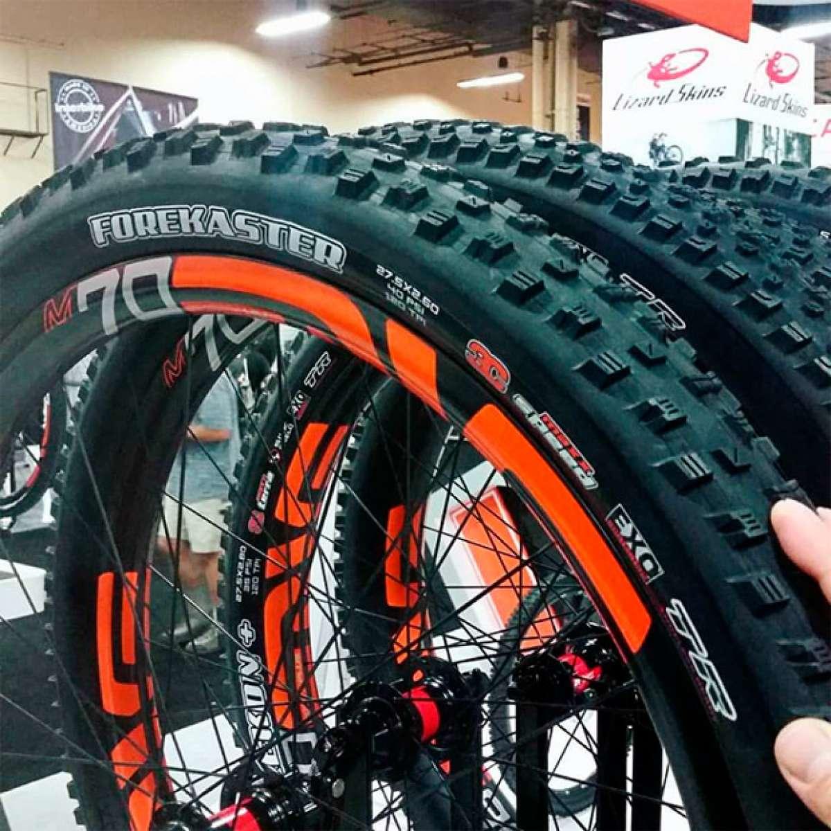 En TodoMountainBike: El TPI de los neumáticos de bicicleta: ¿Qué es y para qué sirve?