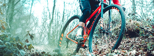 Focus BIG BIRD 36, ruedas de 36 pulgadas para ciclistas de 'grandes' aspiraciones