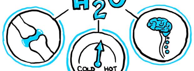 La importancia de una correcta hidratación, explicada en un didáctico vídeo TED